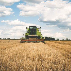 Farming / Agriculture