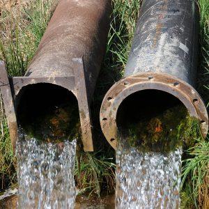 Drains and Sewer Gas Detection